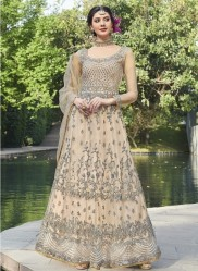 Cream Net With Embroidery Work Anarklai Suit
