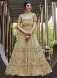 Light Olive Green Net With Embroidery Work Anarkali Suit
